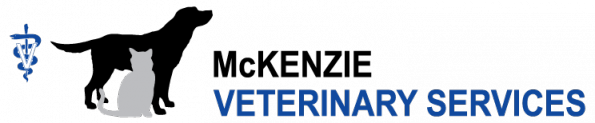 logo-TG1-595x123